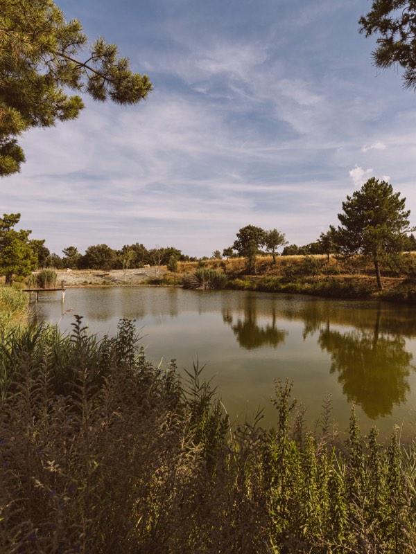 Borgo Le Colline, the natural lake