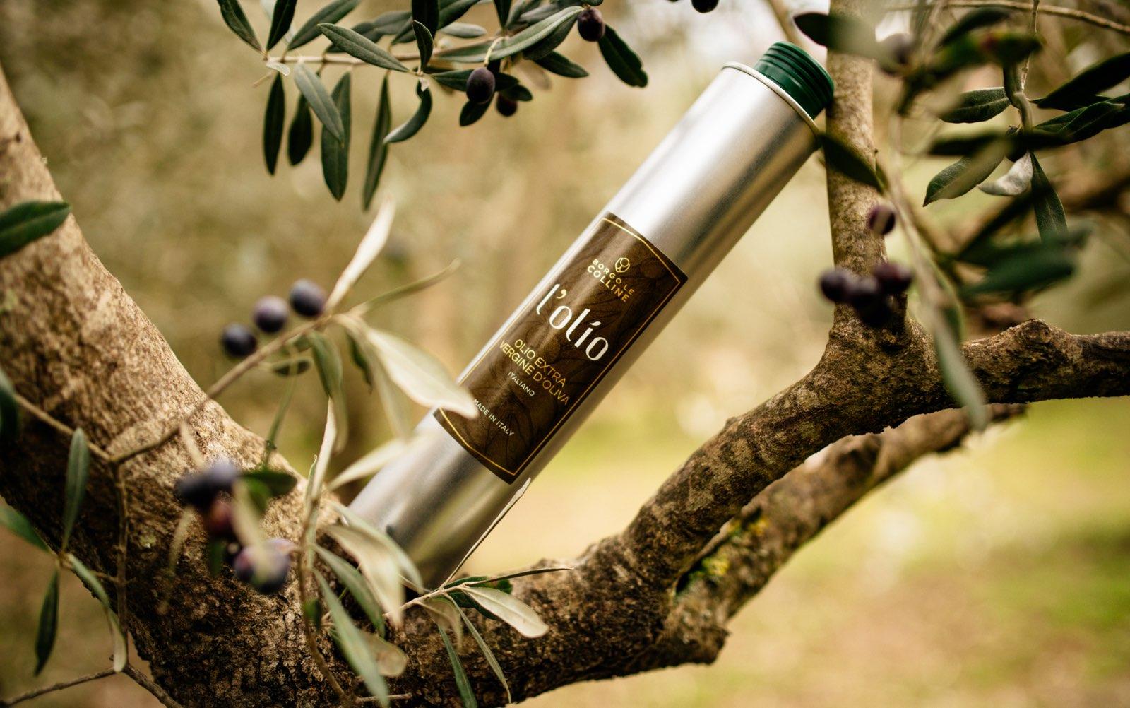 Borgo Le Colline - l'olio extra vergine d'oliva